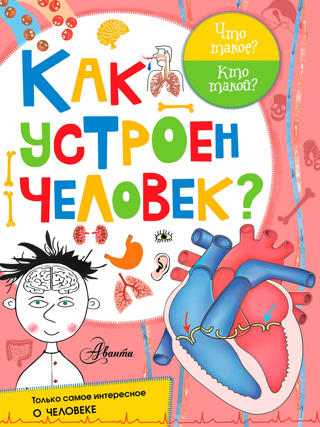 Иванова В.В., Авакян Э.В. Как устроен человек?