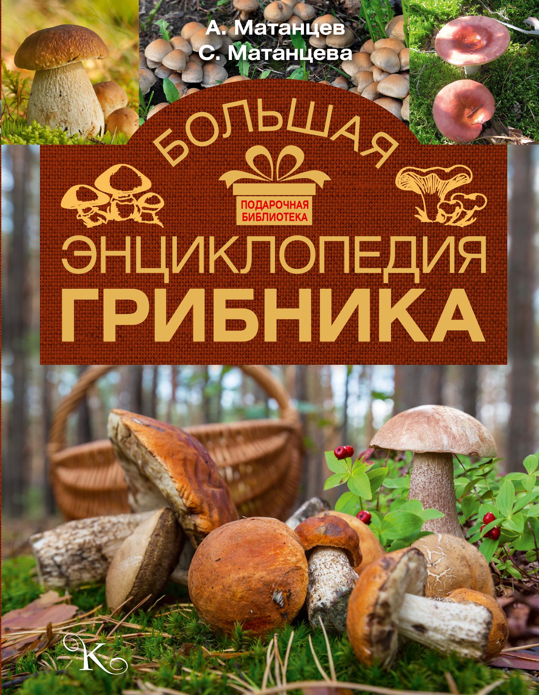 Большая энциклопедия грибника ( Матанцев А.Н., Матанцева С.Г.  )