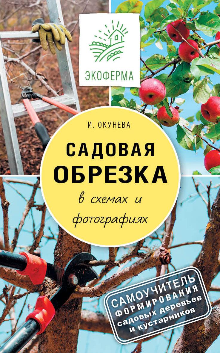 Садовая обрезка в схемах и фотографиях от book24.ru