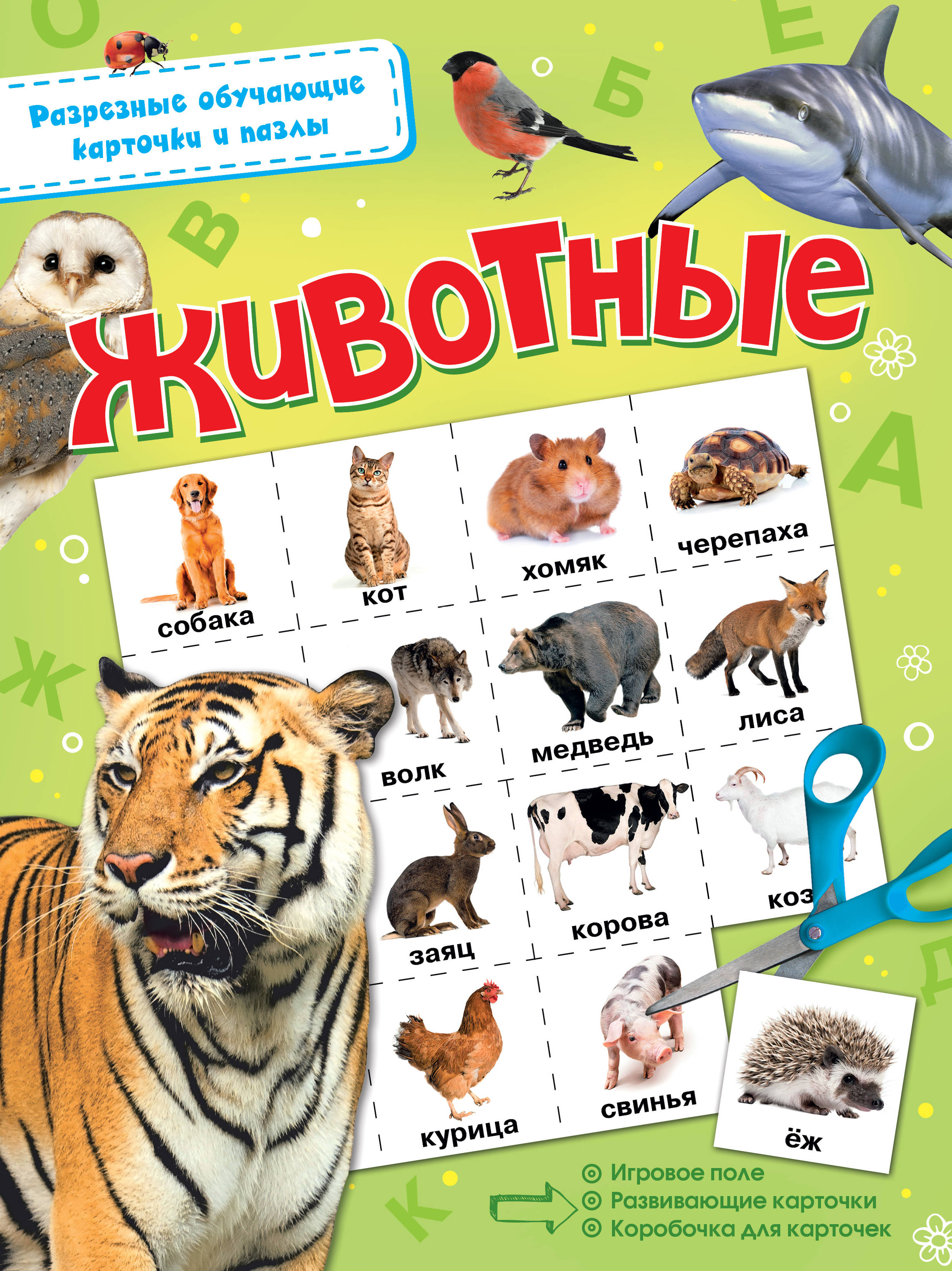 Животные улыбка обучающие карточки деревья россии
