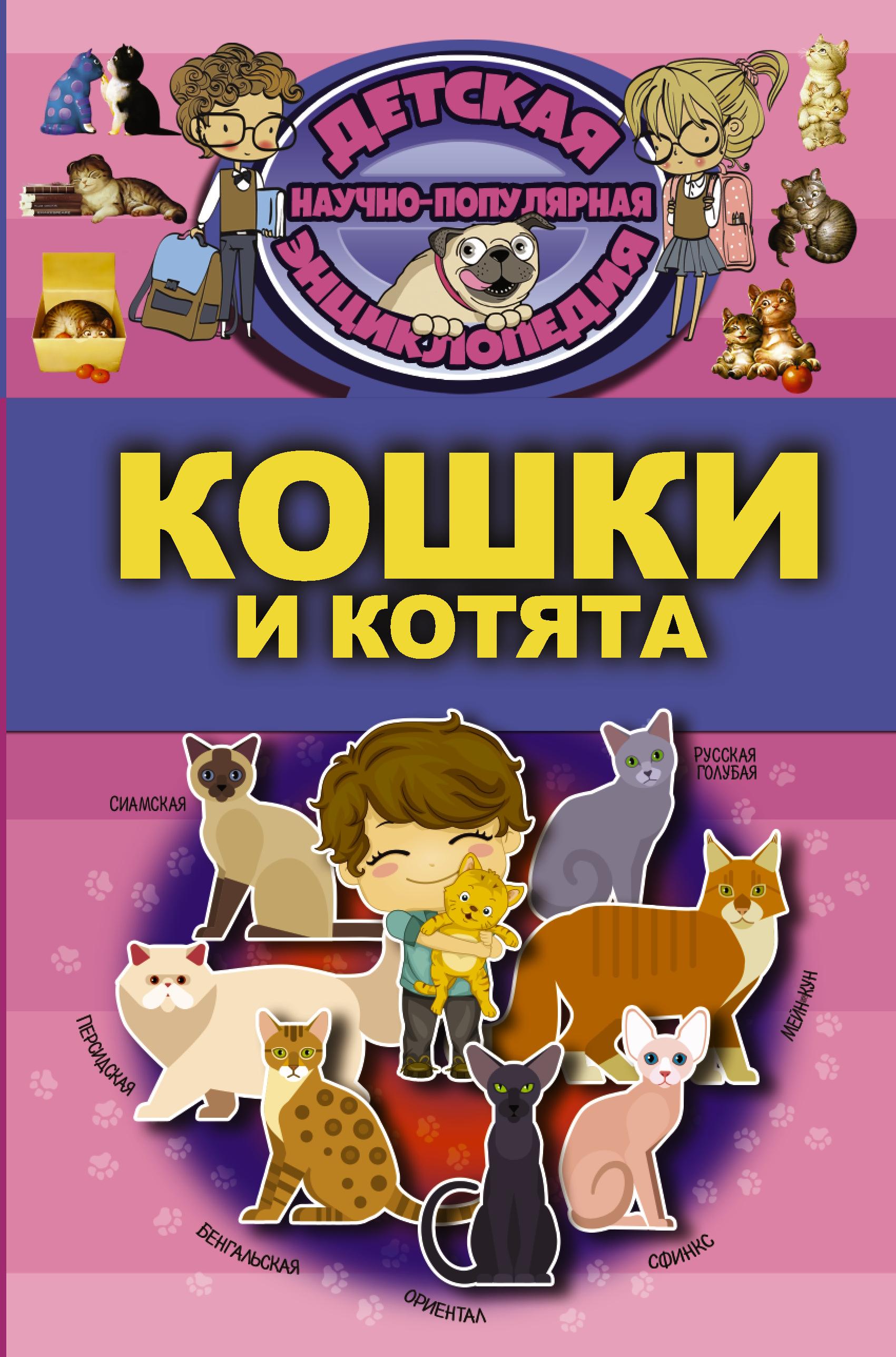 , Кошки и котята как купить собаку в новосибирске породы ризеншнауцер без документов
