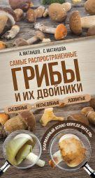 Матанцев А.Н., Матанцева С.Г. - Самые распространенные грибы и их двойники съедобные, несъедобные, ядовитые' обложка книги