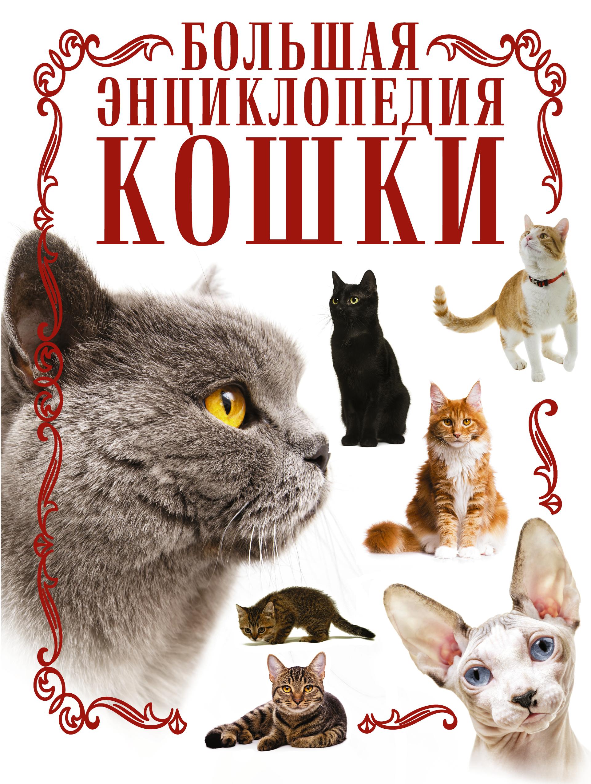 Кошки. Большая энциклопедия ( Смирнов Д.С.  )