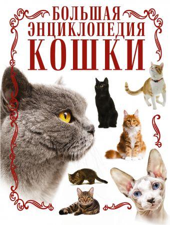 Кошки. Большая энциклопедия Смирнов Д.С.