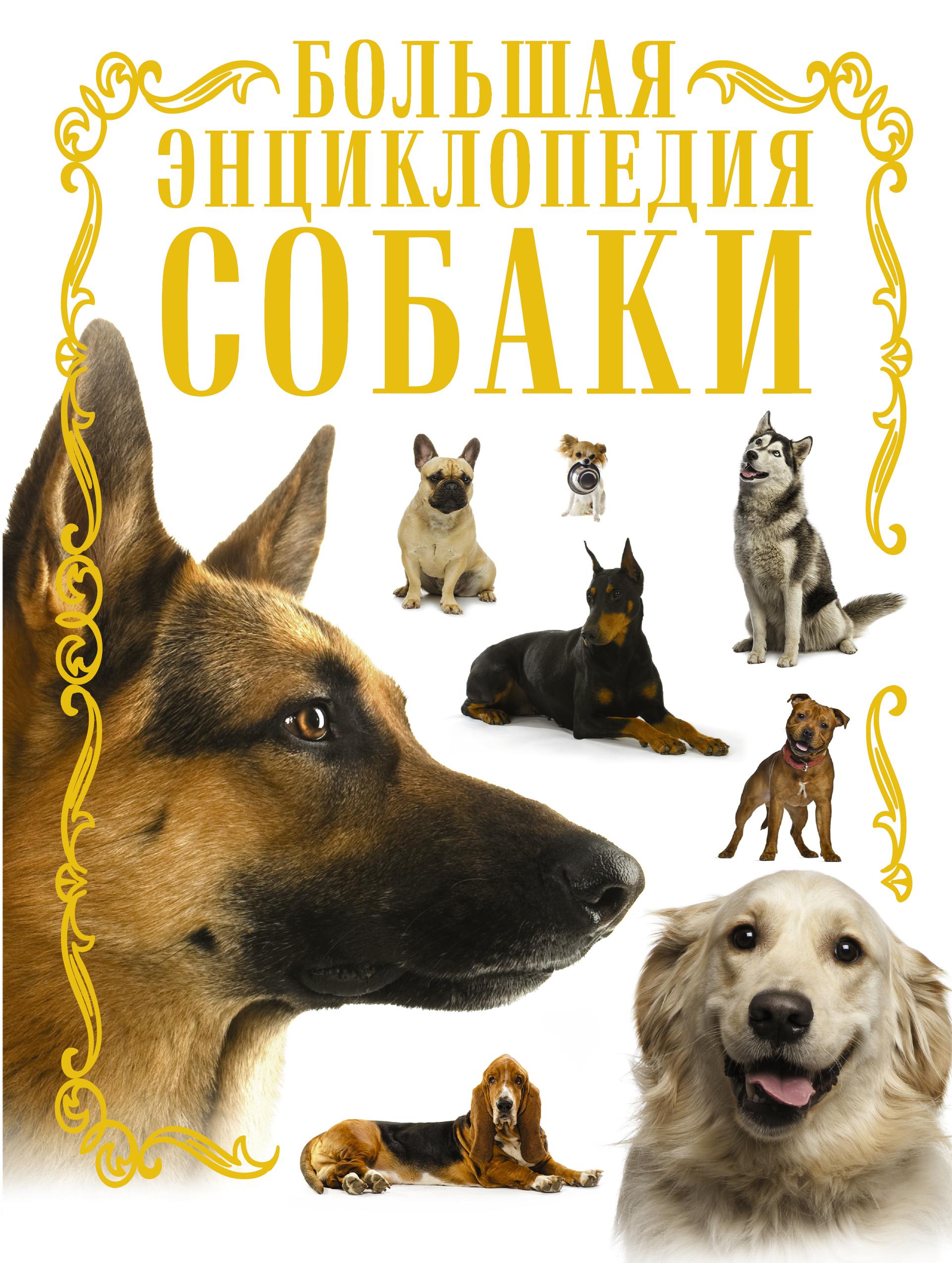 Собаки. Большая энциклопедия