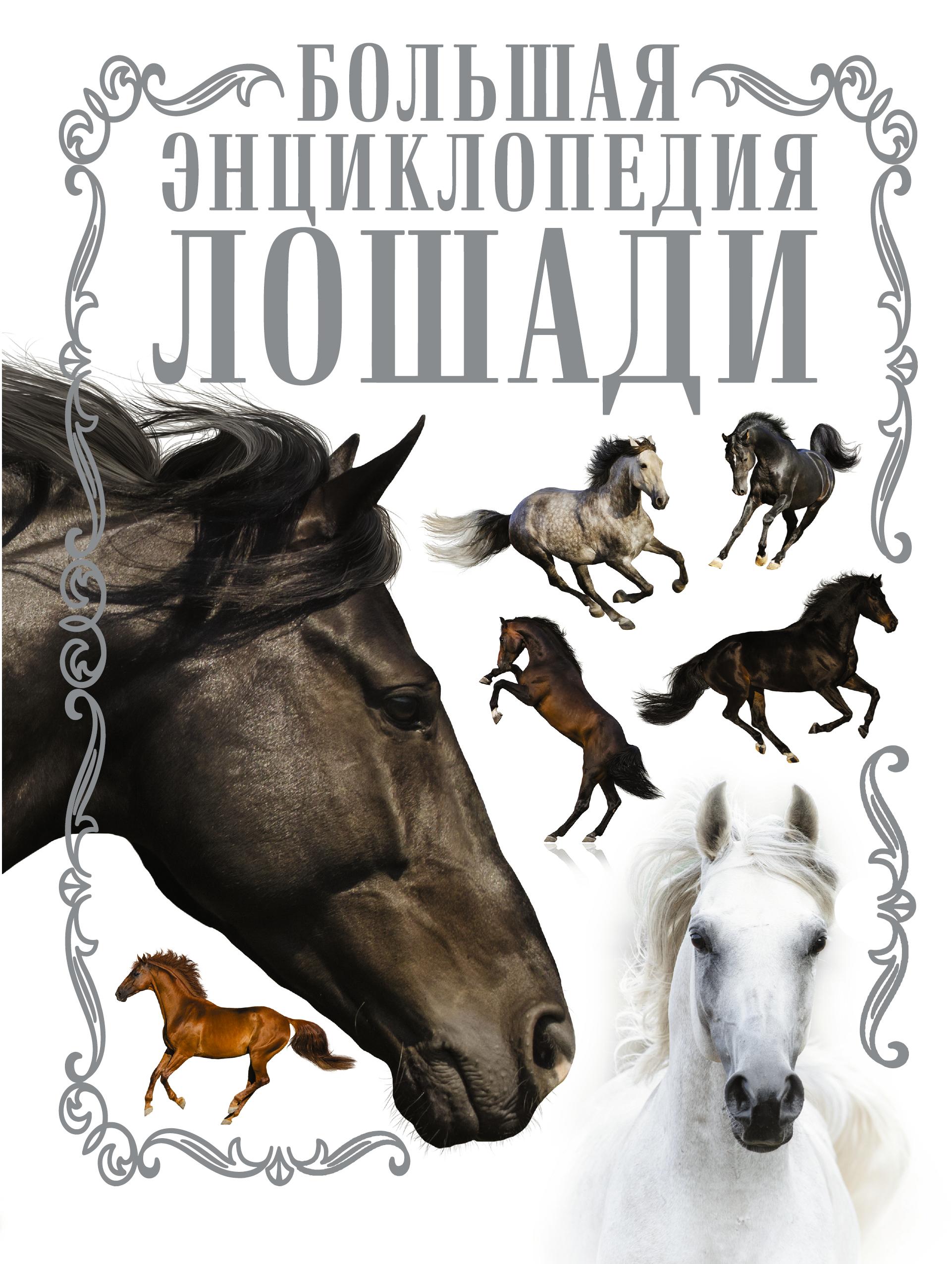 Лошади. Большая энциклопедия ( Спектор А.А.  )