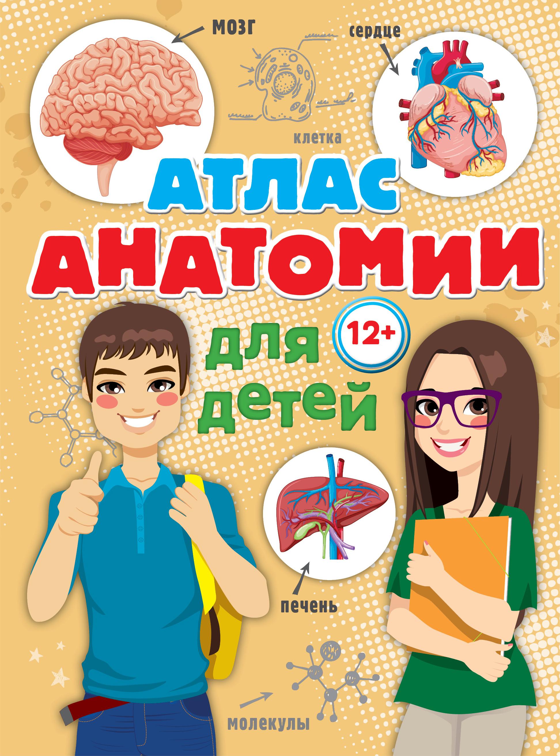 Атлас анатомии для детей ( Швырев А.А.  )