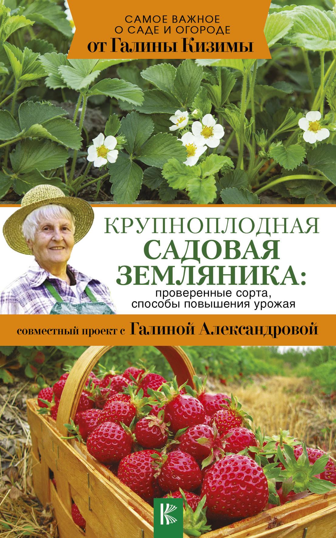Крупноплодная садовая земляника: проверенные сорта, способы повышения урожая ( Кизима Г.А.  )