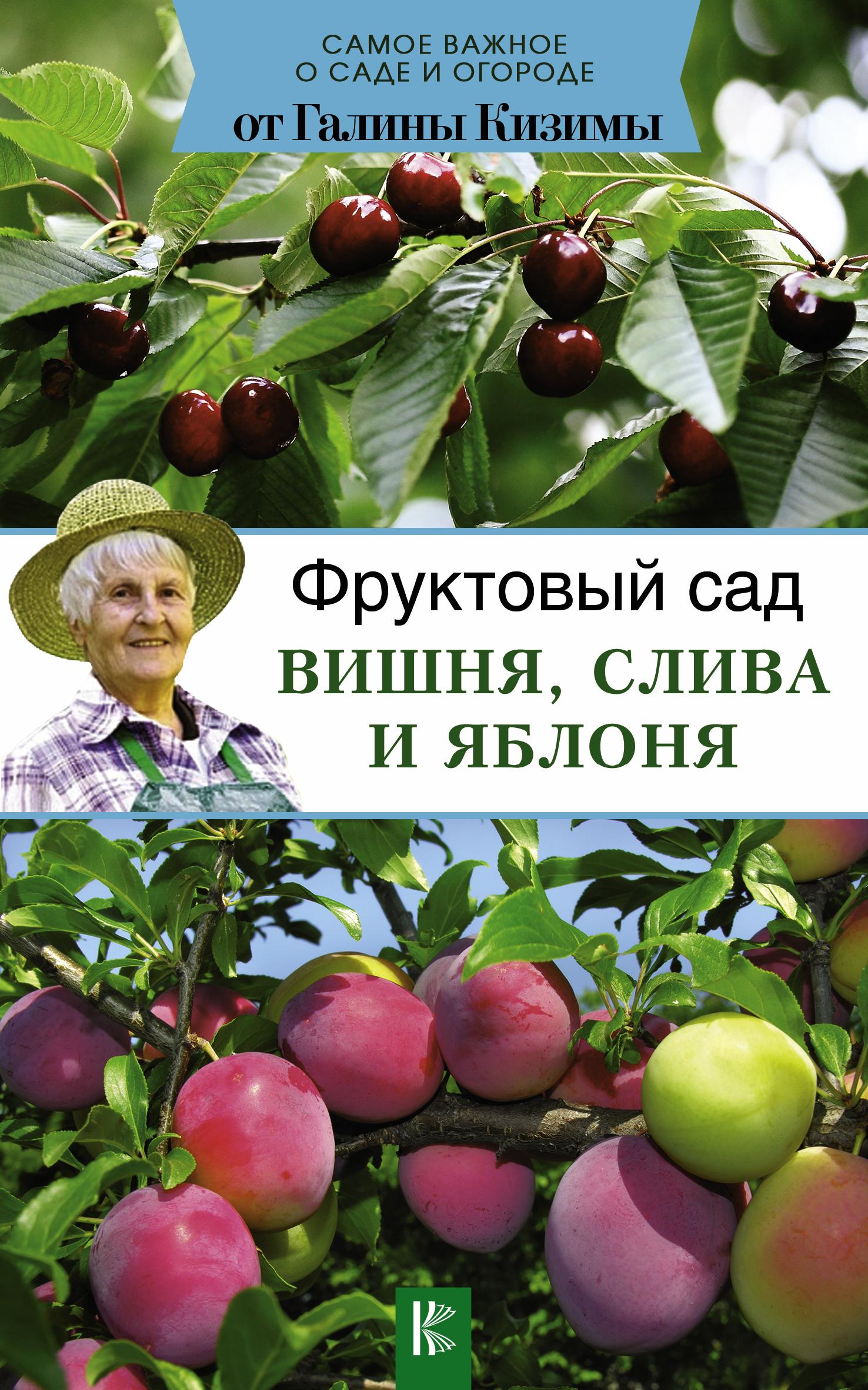 Фруктовый сад. Вишня, слива и яблоня ( Кизима Г.А.  )