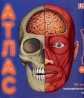 3D атлас человеческого тела : книга-панорама