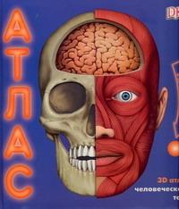3D атлас человеческого тела : книга-панорама обложка книги