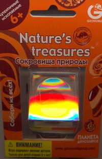G.  Коллекция.Окаменелость в футляре Аммониты  ED223KR от book24.ru