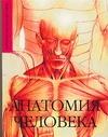 Макарова Е.А. - Анатомия человека обложка книги