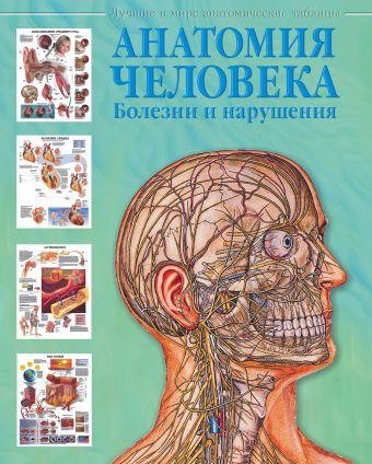 Анатомия человека. Болезни и нарушения Махиянова Е.