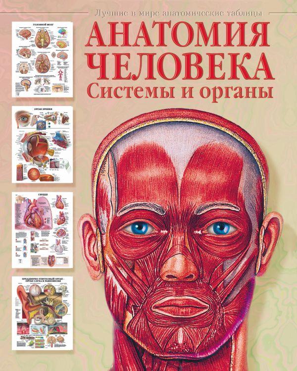 Анатомия человека. Системы и органы Махиянова Е.Б.