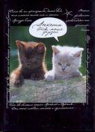 Попова Н. - Анкета для моих друзей(коты, черная)' обложка книги