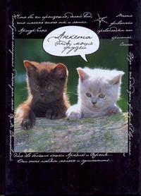 Попова Н. - Анкета для моих друзей(коты, черная) обложка книги
