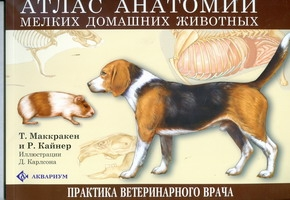 Атлас анатомии мелких домашних животных (305х230) Маккракен Т.