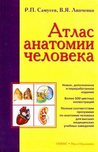 Атлас анатомии человека обложка книги