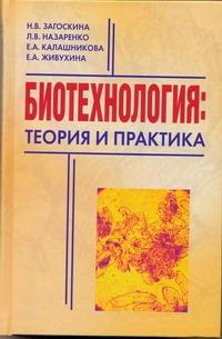 Загоскина Н.В. - Биотехнология:теория и практика обложка книги
