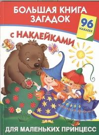 Дмитриева В.Г. - Большая книга загадок с наклейками для маленьких принцесс обложка книги