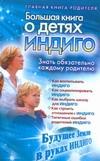 Березина Алина - Большая книга о детях индиго обложка книги