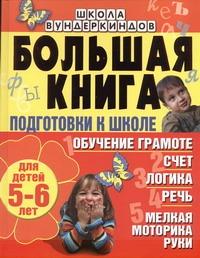 Большая книга подготовки к школе для детей 5-6 лет. Обучение грамоте, счет, логи Гаврина С.Е.