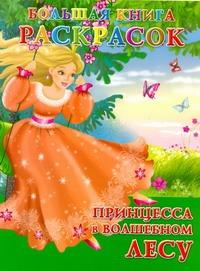 Жуковская Е.Р. - Большая книга расскрасок. Принцесса в волшебном лесу обложка книги