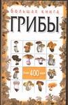 Макарова Н.Е. - Большая книга. Грибы обложка книги