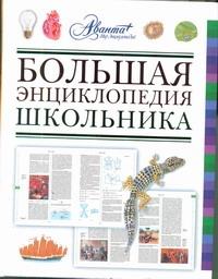 Алексеев С. - Большая энциклопедия школьника обложка книги