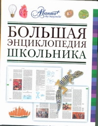 Большая энциклопедия школьника Алексеев С.
