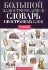 - Большой иллюстрированный словарь иностранных слов обложка книги