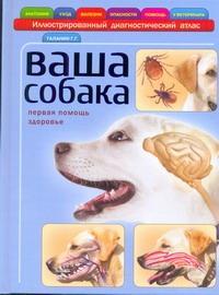Галанин Г.Г. - Ваша собака обложка книги