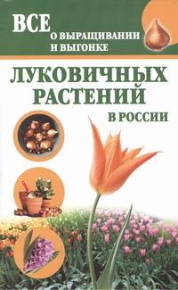Литвинова Т. - Все о выращивании и выгонке луковичных растений в России обложка книги