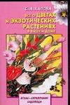 Хапова С.А. - Все о цветах и экзотических растениях в вашем доме' обложка книги