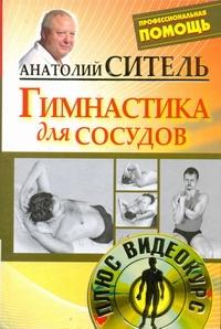 Ситель А. Б. - Гимнастика для сосудов +DVD обложка книги