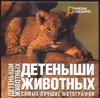Детеныши животных Ильдос А.С.