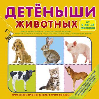 Детёныши животных .