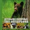 Виар М. - Детеныши животных. 1001 фотография обложка книги