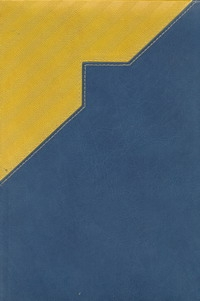 - Ежедневник п/датир.Арт.ДД16-05МД Мадейра Желто-синий 167х237 обложка книги