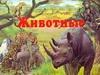 Сендерова Н. - Животные обложка книги