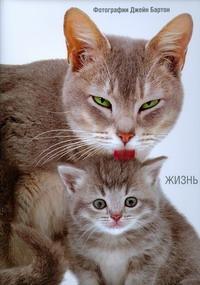 Бартон Дж. - Жизнь кошек обложка книги