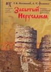 Забытый Иерусалим. Стамбул в свете новой хронологии обложка книги