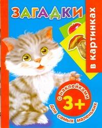 Дмитриева В.Г. - Загадки в картинках с наклейками для самых маленьких. 3+ обложка книги