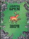 Брем А. Э. - Звери. В 2 т. Т.2 обложка книги