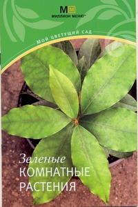 - Зеленые комнатные растения обложка книги