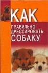 Давыденко В.И. - Как правильно дрессировать собаку обложка книги