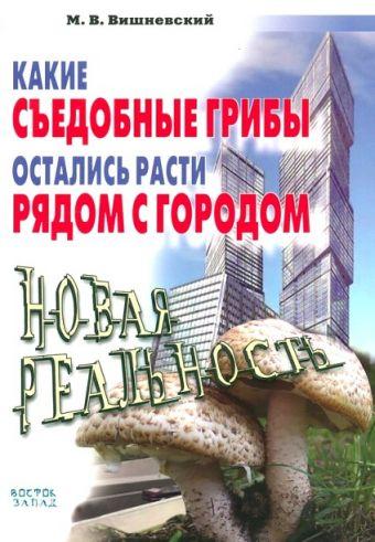 Какие съедобные грибы остались расти рядом с городом Вишневский М.В.