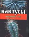Кактусы обложка книги