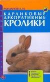 Карликовые декоративные кролики Рахманов А.И.